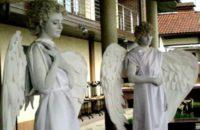 Спецпредложение - Ангел - живая скульптура